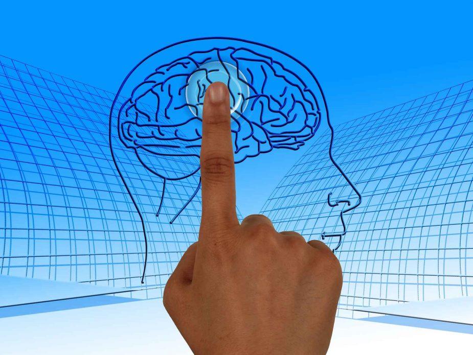 графика на мозък и ръка посочваща към определена област в мозъка